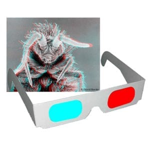 science gizmos anaglyphic glasses