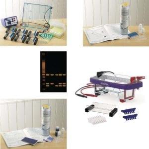 electrophoresis kits and tank