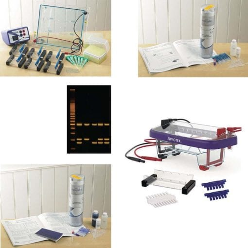 electrophoresis kits and tank